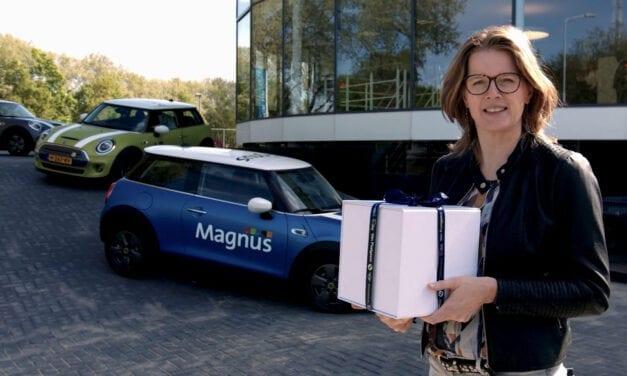 Magnus MINI Electrics